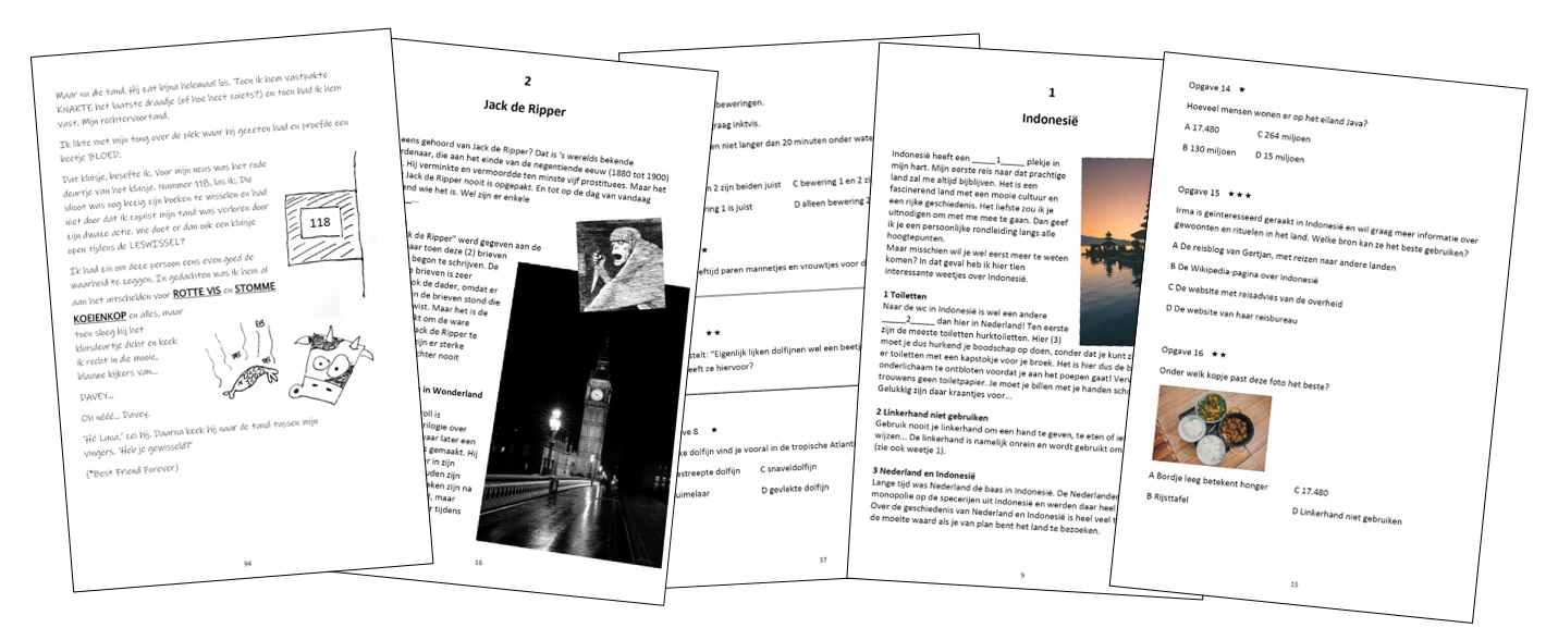 Begrijpend Lezen Oefenboek Impressie